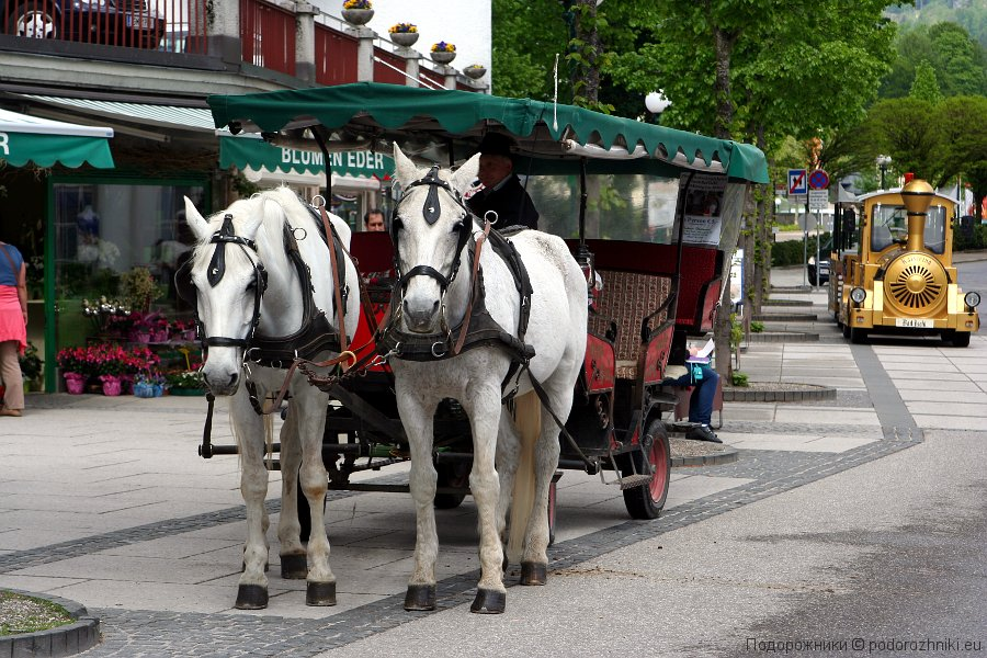 Лошади и паровоз