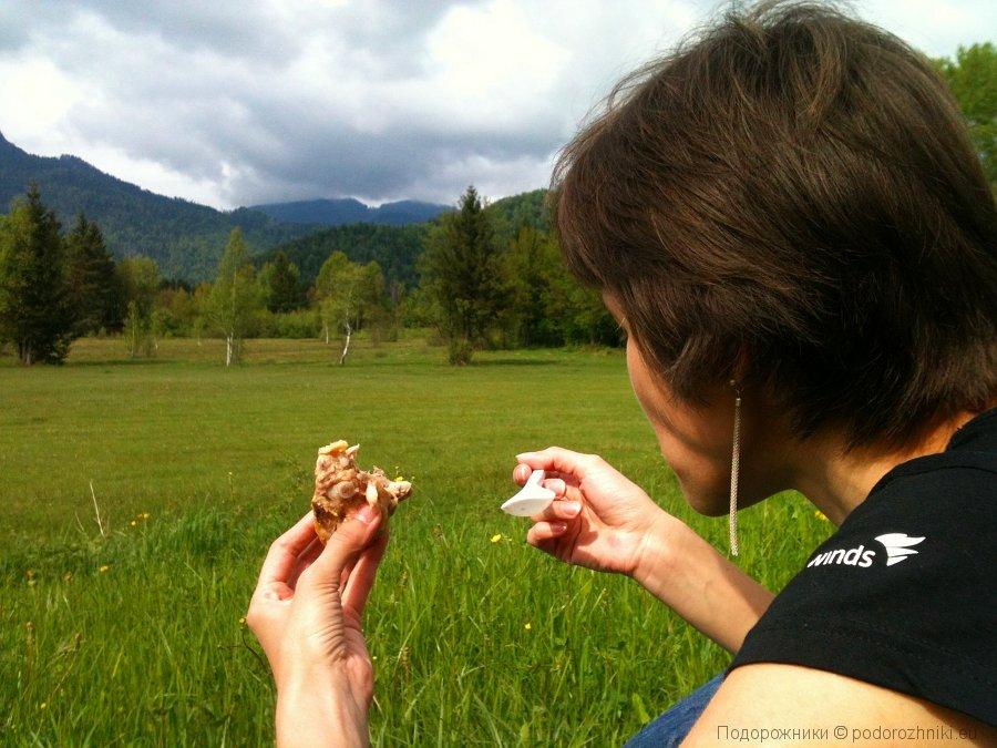 Пикник на австрийско-альпийских лугах