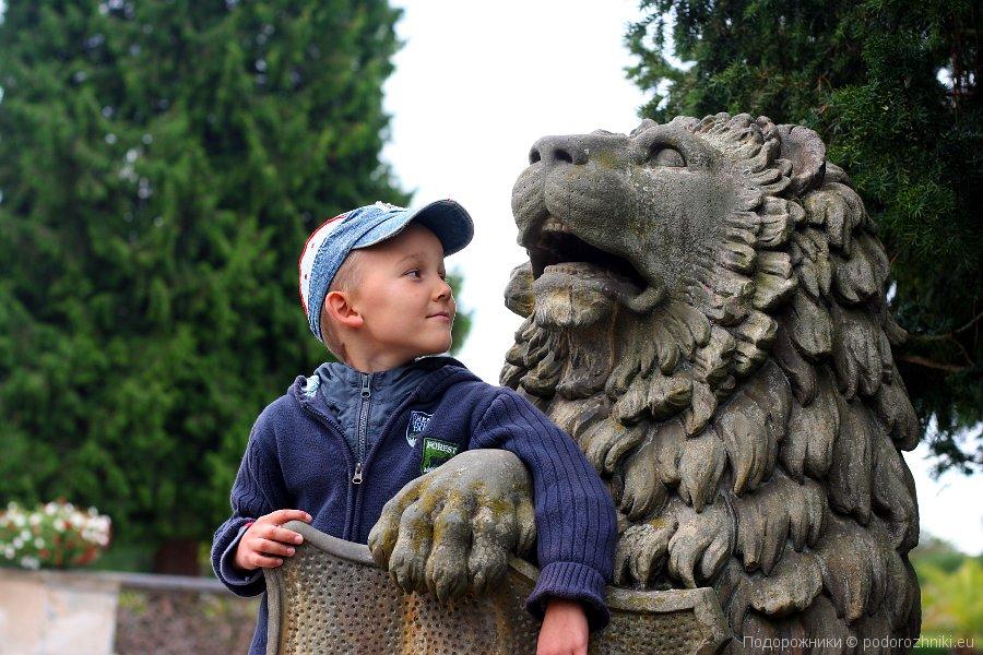 Сашка и лев