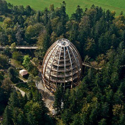 В Баварском Лесу - национальный заповедник