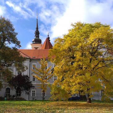 Календарь интересных мероприятий в Брно и Моравии в 2017 году