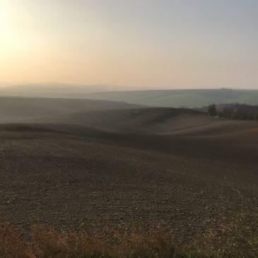 Поля Южной Моравии, Чехия