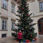 Наши туристы на экскурсии в Брно